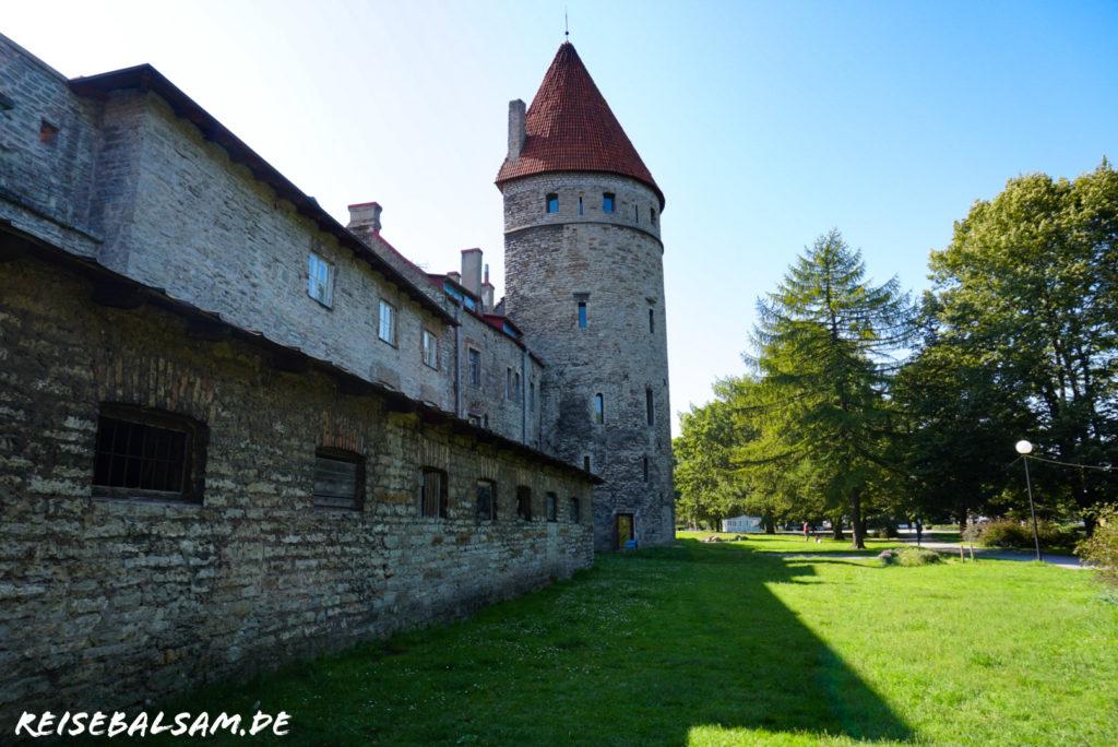 Zu sehen ist der Pulverturm von Tallinn, bei bestem Wetter.